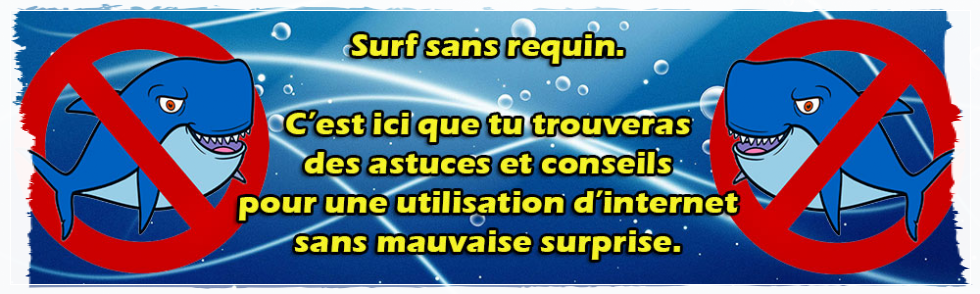 Surf sans requin